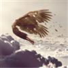 Iamdreamwing's avatar