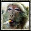 Watzit2ya's avatar