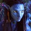 Nyalite's avatar