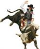Bullrider1987's avatar
