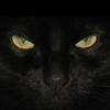 Grey_Valianth's avatar