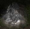 stardragon12-1-8-27-57-52's avatar
