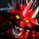 midgetlove's avatar