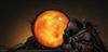 muteownz's avatar